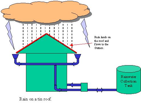 Rain Water Harvesting illustration - 4